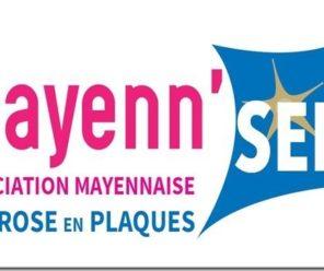 Livre au profit de France Alzheimer Mayenne