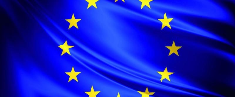 Elections européennes : France Alzheimer s'engage dans une démarche de longue durée