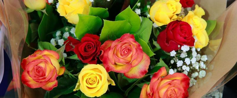Saint Valentin : Offrez des fleurs avec l'agitateur !